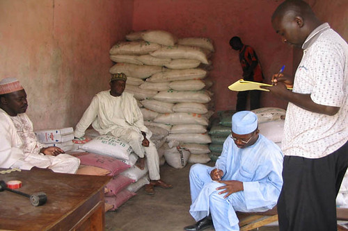 Fertilizer distribution to farmers | by IITA Image Library