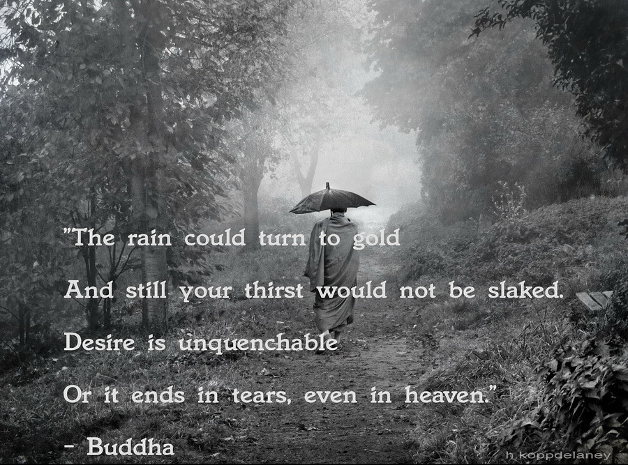 Buddha Quote 52 This Is The 52nd Of 108 Buddha Quotes Flickr