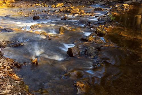 park sunrise woods olympus omd nashuanh minefallspark 1250mm em5 minefallsparknashuanh olympus1250mmf3563 olympusomd olympusem5 olympusomdem5 olympusmzuiko1250mmf3563 olympus1250mm