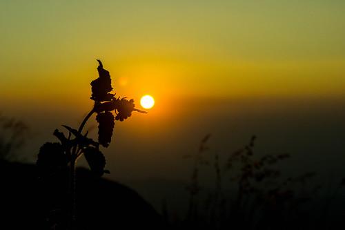 Sunset | by Kumaravel