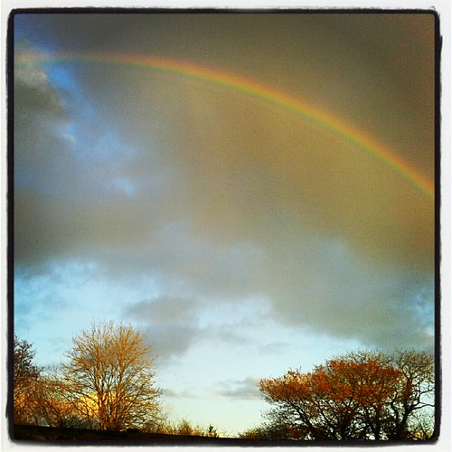 Rainbow Autumn  instagram | by The Last Krystallos