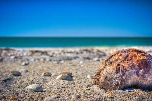 beach florida canon20d hdr 2012 gulfcoast photomatix photmatix littlegasparillaisland brycehoover thanksgiving2012 3clixpix