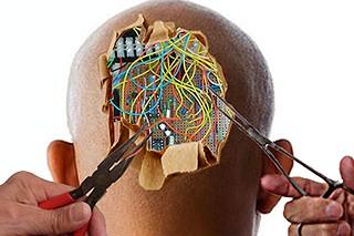 Rewiring the human brain | by wbillard