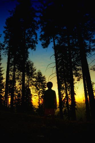 california sunset sony sequoianationalpark nex7
