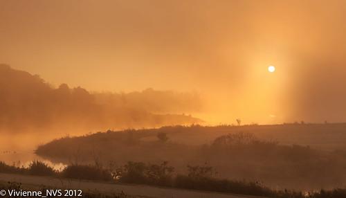 autumn mist lake fog sunrise illinois frost preserves lakecounty independencegrove foggyscenes