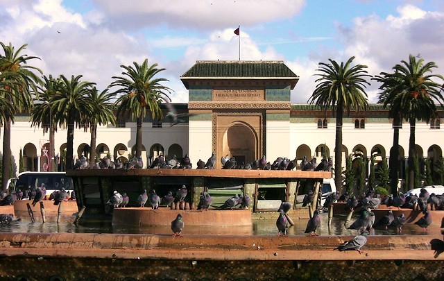 Marokko ,  Casablanca, Place Mohammed V.  Taubeninvasion , 1-5/11571
