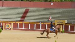 vídeo 05 Exhibición de Doma Vaquera y alta escuela en Fuengirola octubre 2012
