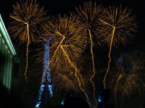 Bastille Day fireworks | by martinie.ryan