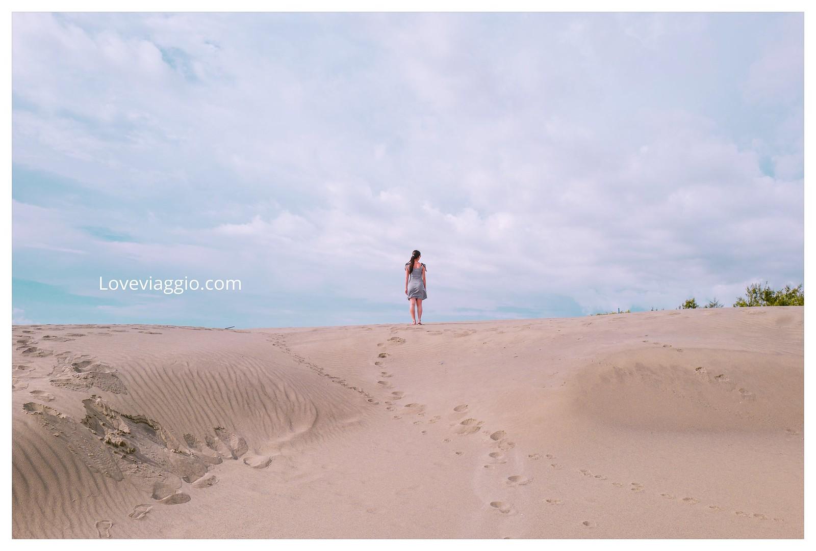 【台南 Tainan】台南頂頭額沙洲 彷彿來到荒蕪無邊際的沙漠世界 @薇樂莉 Love Viaggio | 旅行.生活.攝影