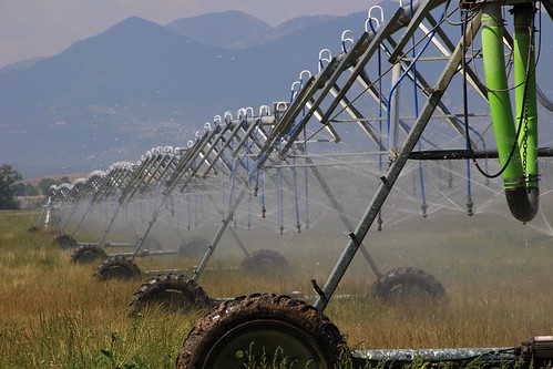 pivotsprinkler watering irrigation farming agriculture sprinklers piping centerpivotsprinkler spray spraying sprayingwater machine pipes triangle nozzle nozzles green shower repetition wheel wheels wateringsystem irrigationsystem centerpivotirrigation centerpivotsprinklers wet