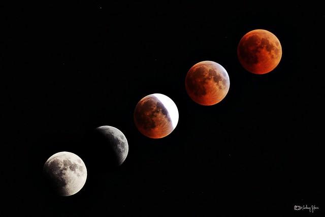 Lunar eclipse: Century's longest 'blood moon'