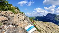 Alpiner Weg mit Ifen