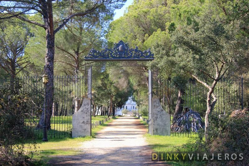 Doñana 001