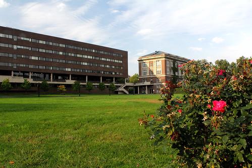Campus Scene _1060