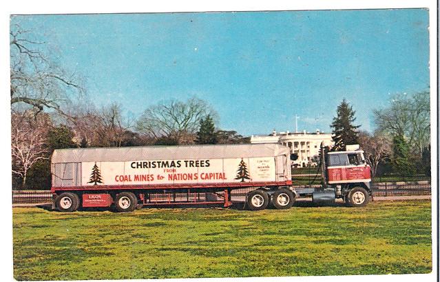 Christmas Tree Truck Postcard
