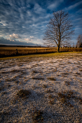 winter sky snow tree clouds fence landscape bayofquinte