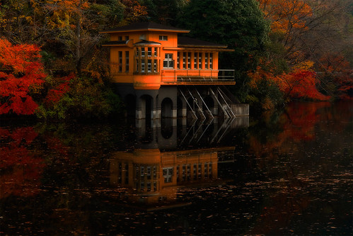 autumn sunset lake fall japan maple 2012 kamakitako saitamapref