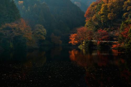 autumn sunset lake reflection fall japan 2012 kamakitako saitamapref moroyamatown