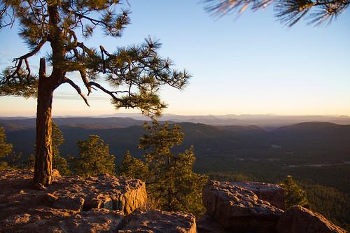 arizona az landscape forest ponderosapines sunset canon t2i 550d stickneydesign lifelover4 efs1755mmf28isusm leefilters mogollonrim onearthnrdc hughstickney