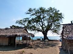 za, 10/11/2012 - 08:38 - 139. Nije Faam voor het dorpje Marotia in Baly Bay