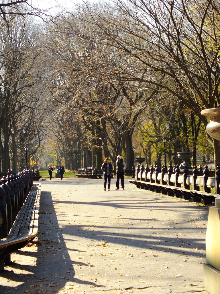 Central Park Or A Scene From Maid In Manhattan Chris Parker Flickr