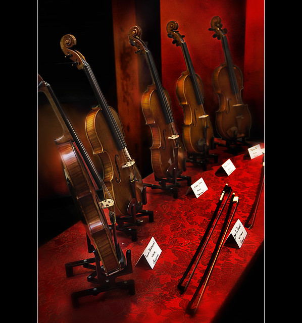 Violins in red  (Explored)