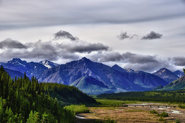 Teklanika River and a Mountain Backdrop