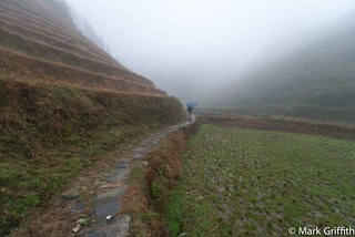 Longsheng Rice Terraces | by Mark Griffith