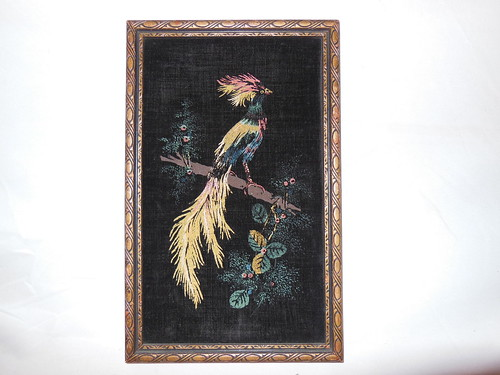 Black Velvet bird of paradise?