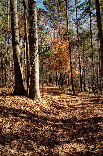 waxhawnc canecreekpark ghholtphotography