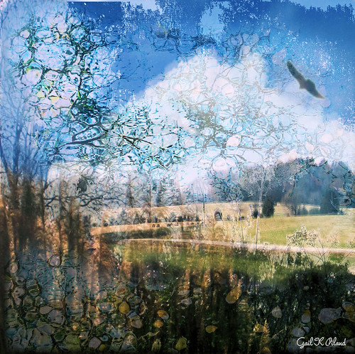 trees bird clouds landscape textured countryroads deepcreek thegalaxy flickraward rememberthatmomentlevel1
