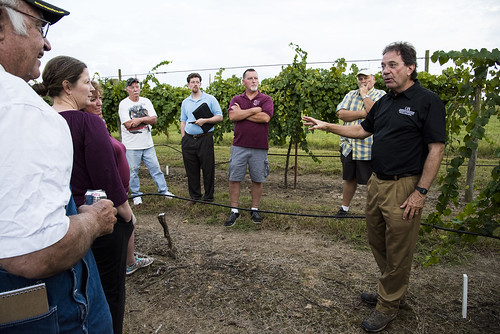 Grape Workshop and Field Day