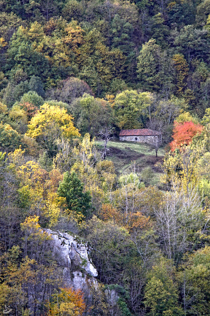 Otoño en Teverga-Asturias