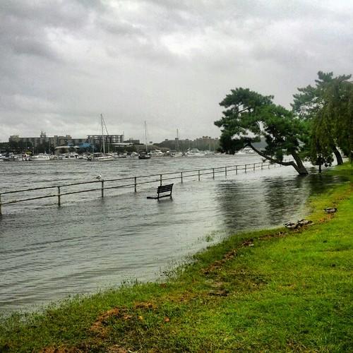 Coastal flooding in Washington DC. #adaptation #climate #tides | by brunosan