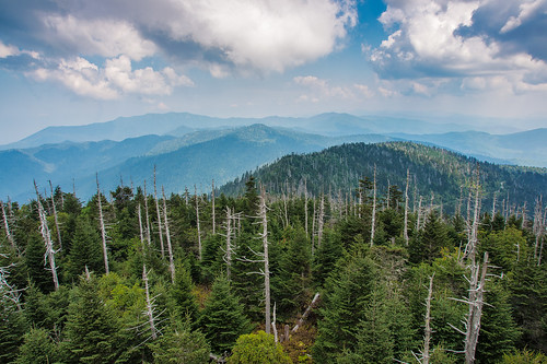 park sky mountains tree tower clouds landscape nationalpark view tennessee great north northcarolina lookout national dome carolina smoky smokymountains clingmansdome lookouttower greatsmokymountains greatsmokymountainsnationalpark clingmans