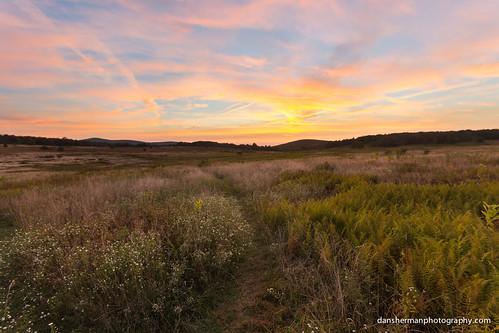 sunrise virginia nationalpark colorful unitedstates meadow syria shenandoah bigmeadows shenandoahnationalpark colorfulsunrise shenandoahsunrise