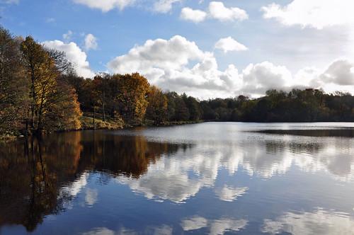 uk autumn england home clouds reflections nikon lancashire autumncolours autumnal 2012 rowley burnley d90 nikond90 rowleylake myfreecopyright swjuk nov2012