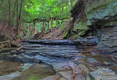 bridge ohio tree creek forest landscape woods stream scenic foliage oh northeastohio morelandhills wileycreek