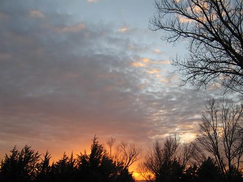 trees sunset sky sun clouds kansas fleeting mothernature longing yearning fortrileysunset