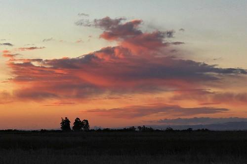 northerncalifornia sunrise dawn solanocounty suisunmarsh
