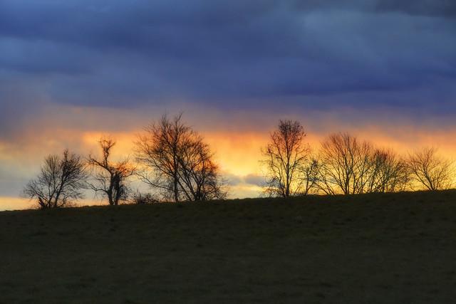 Hills of Roxbury-