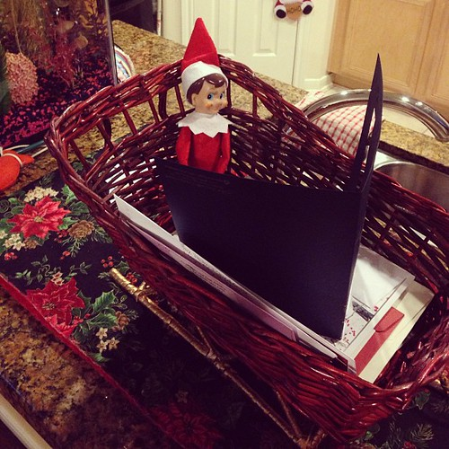 Christmas cards have started coming in & we found Frank cozy in the card sleigh reading through them! 15/24 #elfonashelf | by Mish Mish