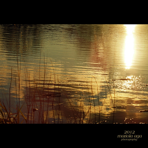 park autumn light sunset sun sunlight lake abstract reflection nature water grass square golden surface shore tones alchemy thegalaxy mygearandme mygearandmepremium mygearandmebronze