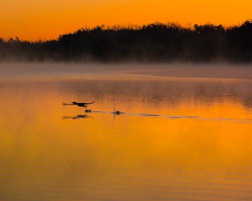 lake water fog sunrise day unitedstates steam arkansas fayetteville fogg