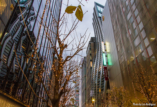 Luces Navidad Ginza-9 | by luisete