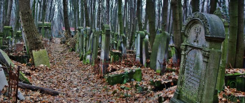 Cementerio judío Varsovia