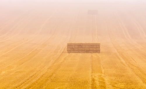 sixpennyhandley fog mist dorset uk gb field cerealplant bails straw nopeople summer july 2016 paisajes anthonywhitesphotography