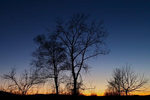 longexposure blue trees sunset sky orange newyork black cold fall nature night dusk air silhouettes upstate canonef24105mmf4lisusm canoneos5dmarkii