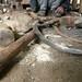 Forgeron confectionnant des outils servant à la culture du thé