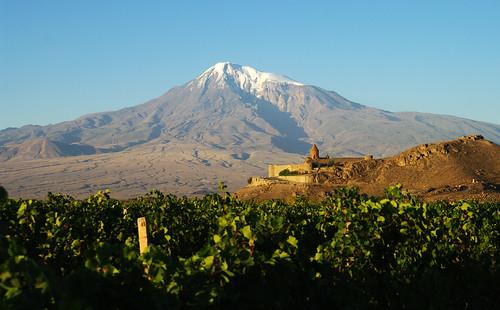 morning autumn sun fall sunrise early vineyard october view country illumination mount monastery armenia vista overlook viewpoint armenian ararat mtararat khor mountararat khorvirap virap խորվիրապ խոր վիրապ